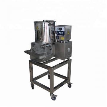 Automatic High Precision High Speed Hamburger Box/Lunch Box/Chip Box/Carton Box/Fast Food Box Making Machine