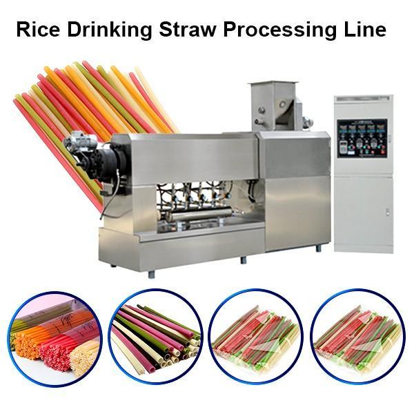 Pasta Straws Machine Drinking Straw Machine Rice Straw Machine #1 image
