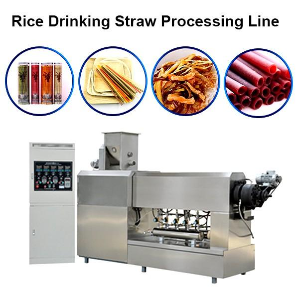 Degradable Straw Extruder Machine Single Screw Edible Drink Rice Straw Production Line #1 image