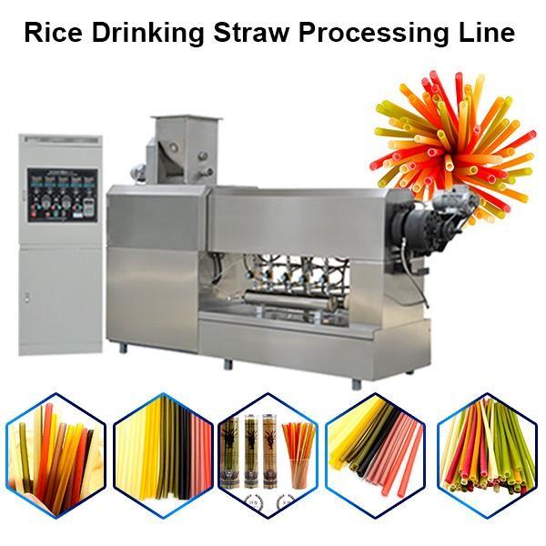 Pasta Straw Machines Making Rice Drinking Straw Machine #1 image