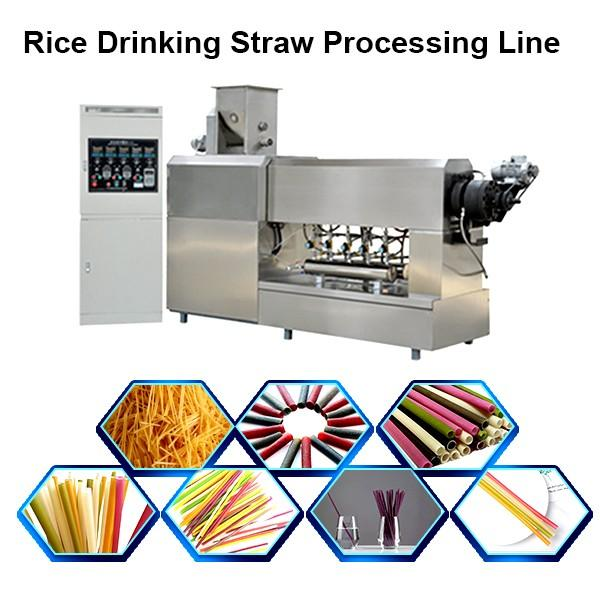 Automatic two colors straight PP PE plastic drinking straw extruder #1 image