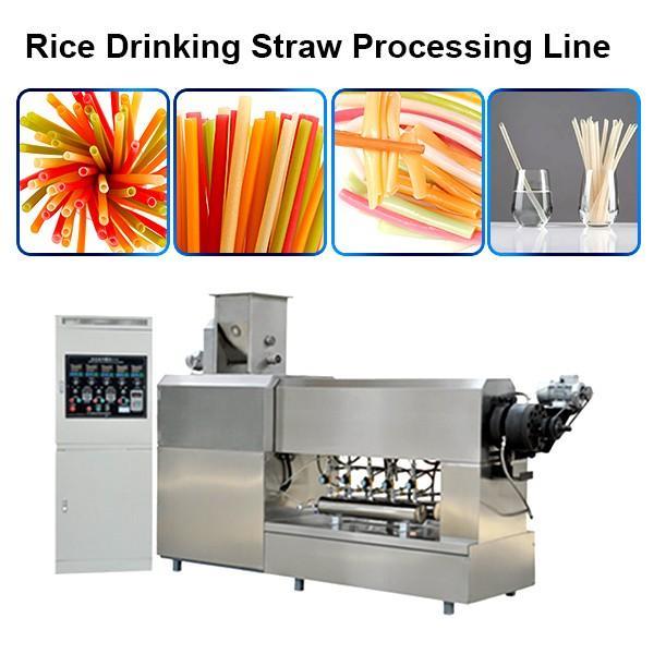 Pasta spaghetti tagliatelle ravioli maker machine pasta straw machine extruder italian pasta machine #1 image