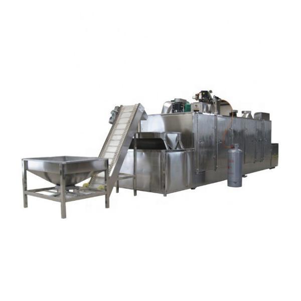 Industrial Multi Layer Mesh Belt Dryer for Wood Chips #1 image